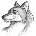 Profilbild von WulfieWolf